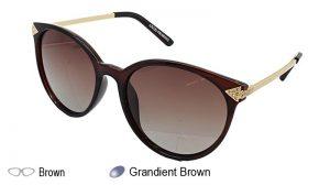 YS5829P Ladies Sunglasses
