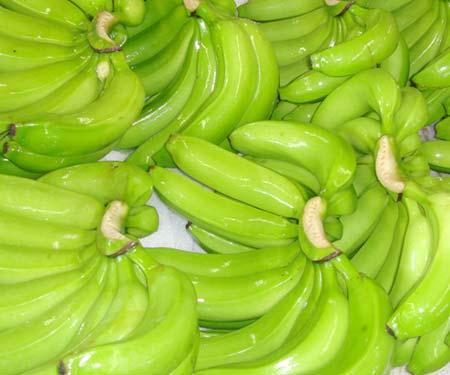Fresh Cavendish Banana 01