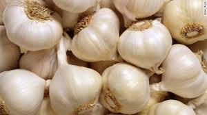 Fresh Garlic  02
