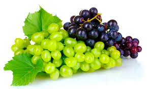 Fresh Grapes 01