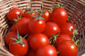 Fresh Tomato 02