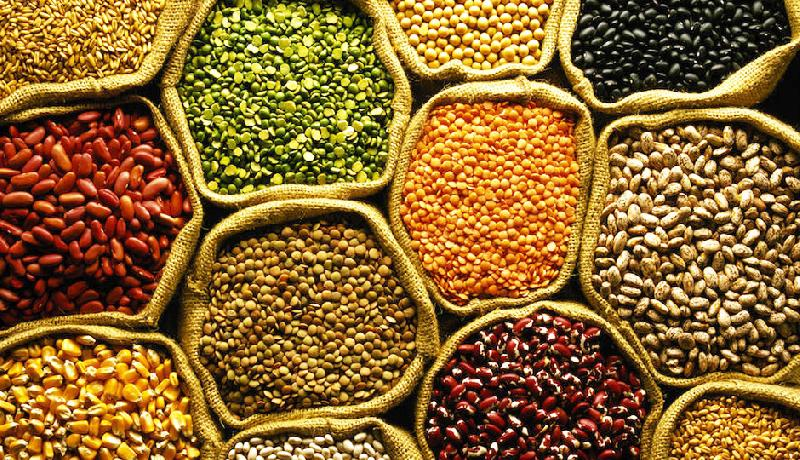 Indian Pulses 01