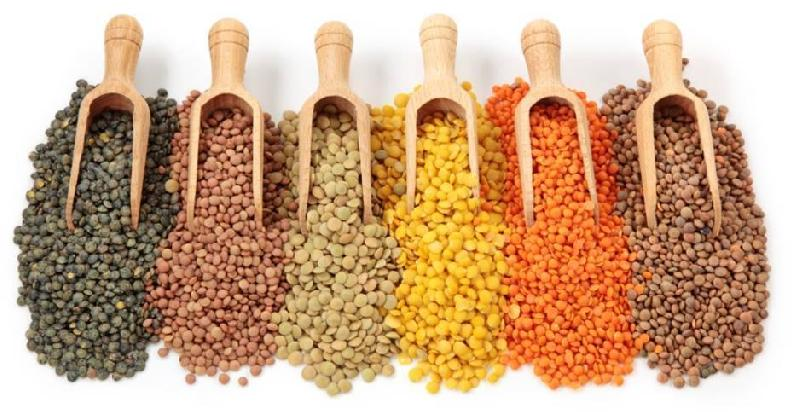 Indian Pulses 02