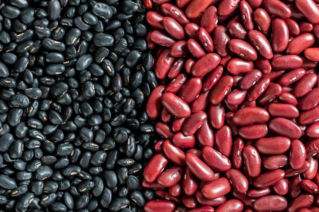 Kidney Beans Exporter in South Africa,Kidney Beans Suppliers from