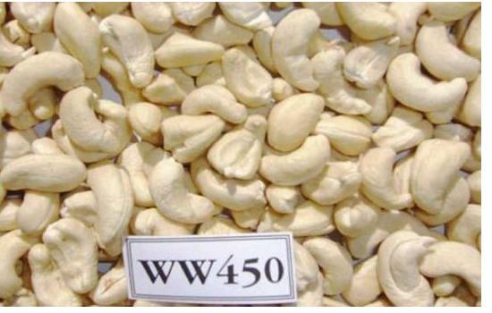WW450 Cashew Nuts