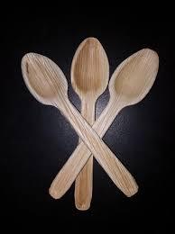 Areca Leaf Spoon
