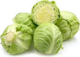 Fresh Cabbage 02