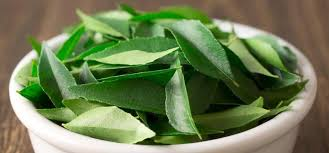 Fresh Curry Leaves 01