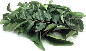 Fresh Curry Leaves 02