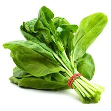 Fresh Spinach Leaves 02