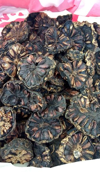 Dry Slice Noni Fruits