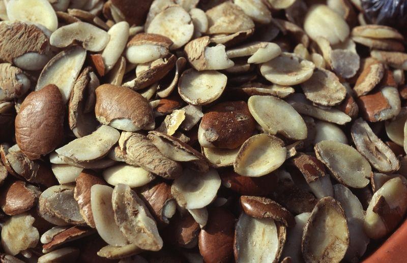Ogbono Seeds