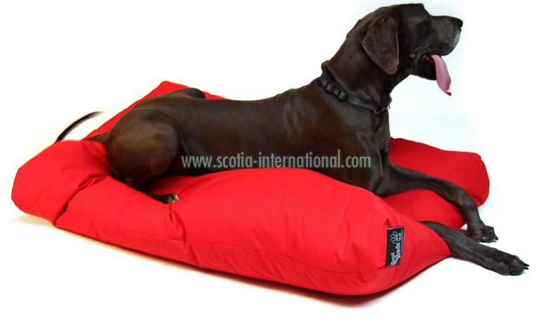 Dog Bed 06