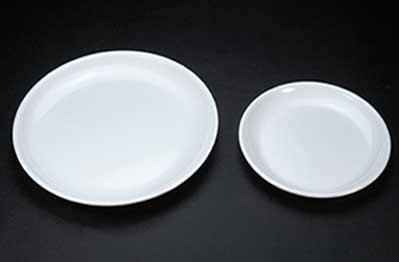 Polycarbonate Dinner Plates 02