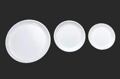 Polycarbonate Dinner Plates 03
