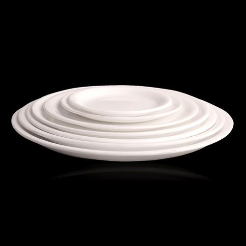 Polycarbonate Dinner Plates 04