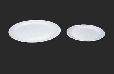 Polycarbonate Dinner Plates 05