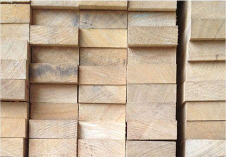Teak Wood 01