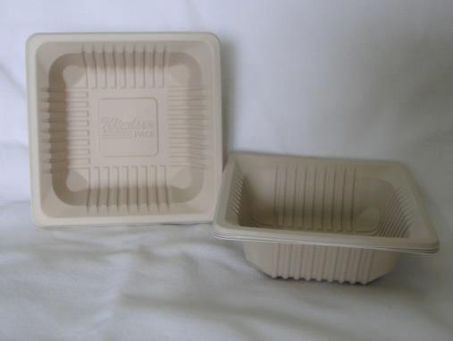 Biodegradable Square Dona