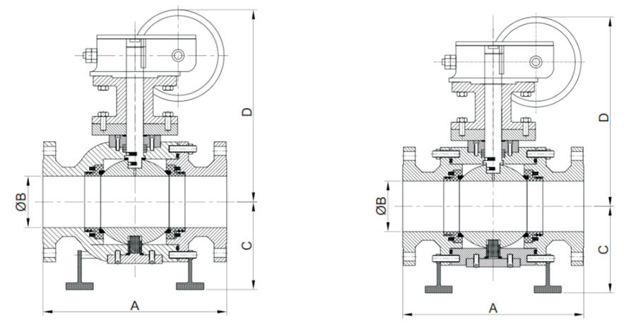 Graphical Images (ASME Class 150 & 300) (Full Bore)