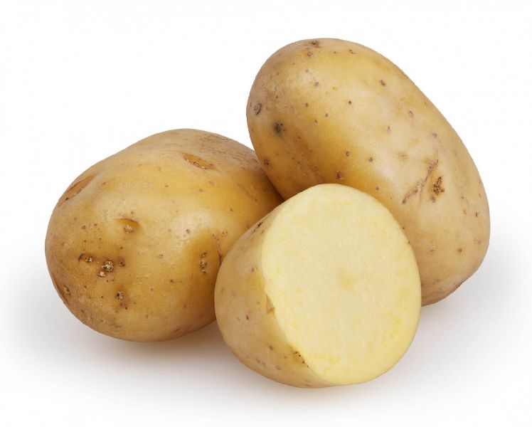 Fresh Potato 03