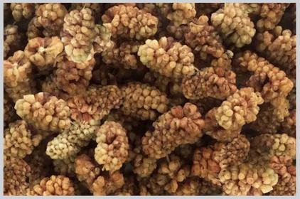 Dark Dried Mulberries