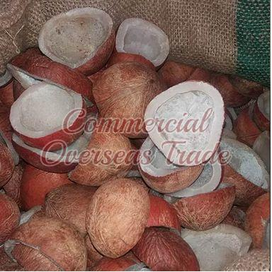 Dried Coconut Copra 01