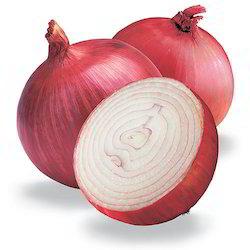 Fresh Red Onion 02