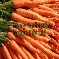 Fresh Carrot 02
