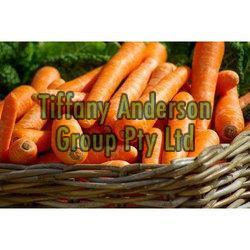 Fresh Carrot 03