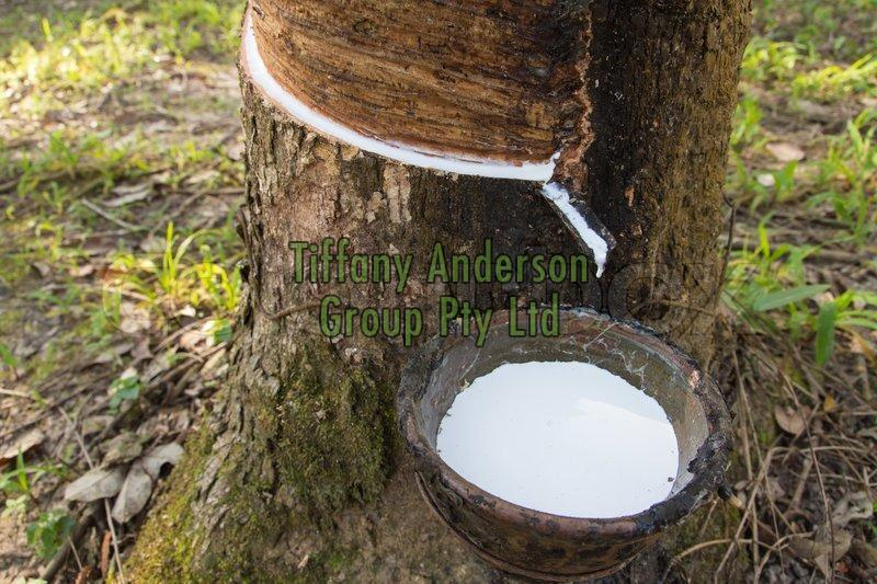 Natural Rubber Latex