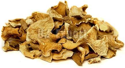Dried Mushroom 02