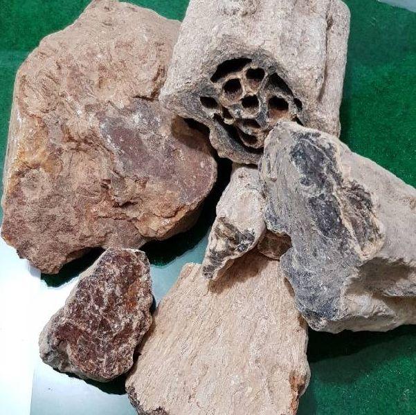 Damar Batu Lump 02