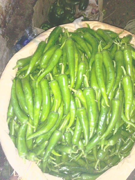 Fresh Green Chilli 06