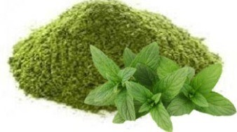 Dried Mint Powder