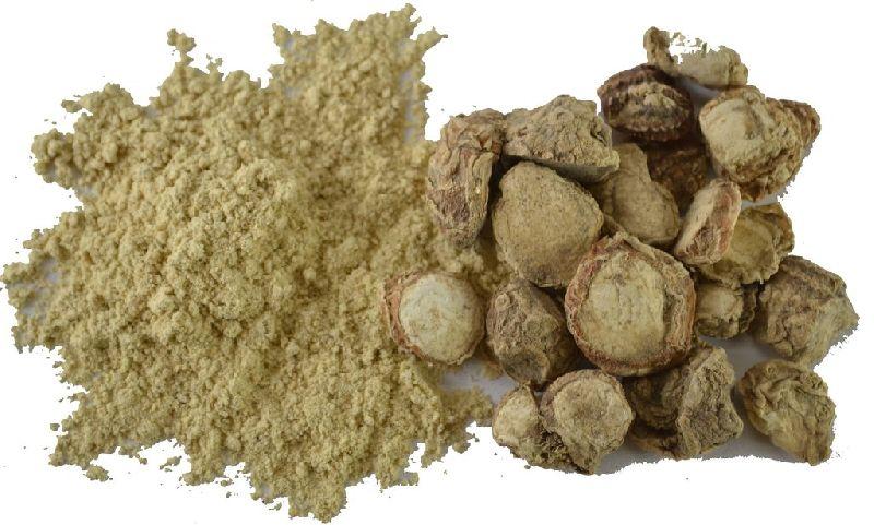 Kapur Kachli Powder