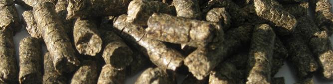 Beet Pulp Pellets