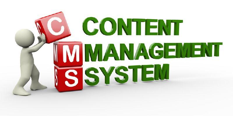 Content Management Software Services