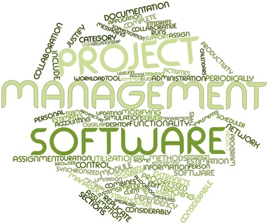 Project Management Software Development Services