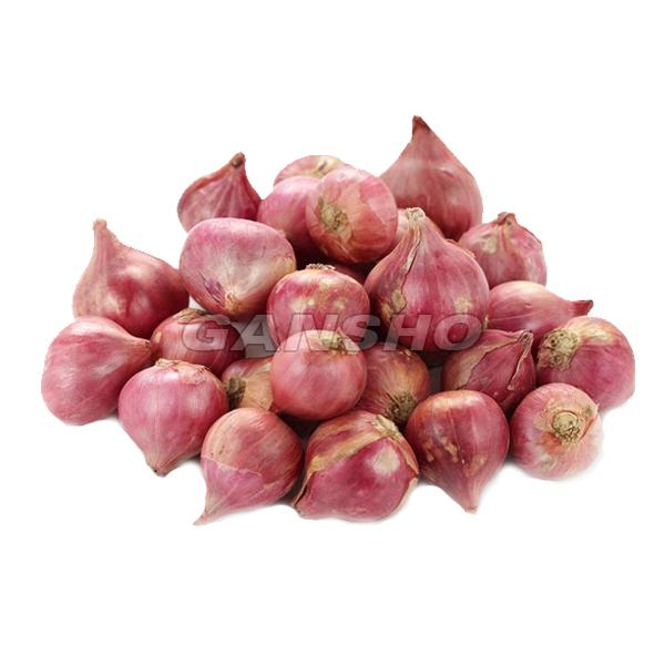 Fresh Shallot Onion