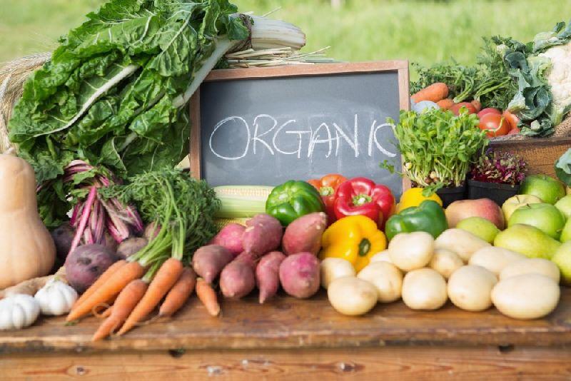 Organic Vegetables 01