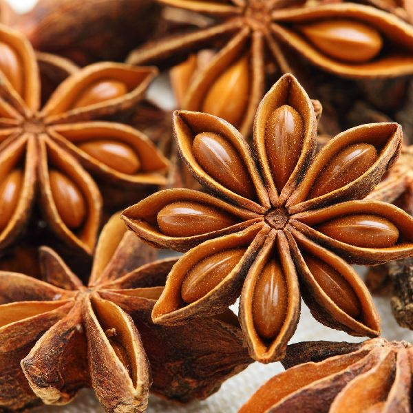 Star Anise Seed 02
