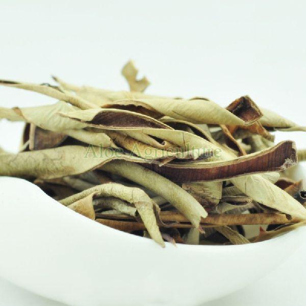 Dried Aloe Vera Leaves