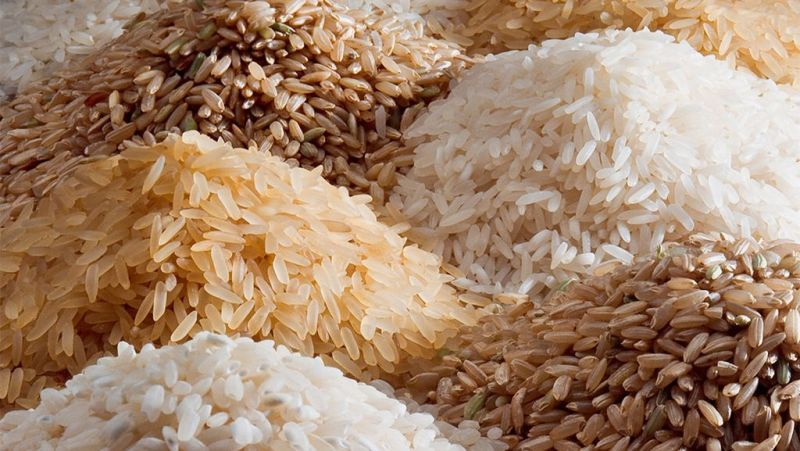 Indian Rice 03