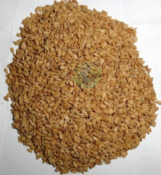 Sesame Seed 02
