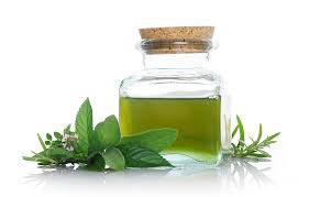 Menthol Essential Oil