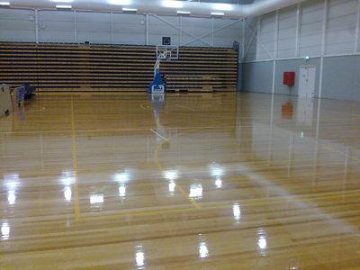 PUD Recommendations For Sports Timber Courts