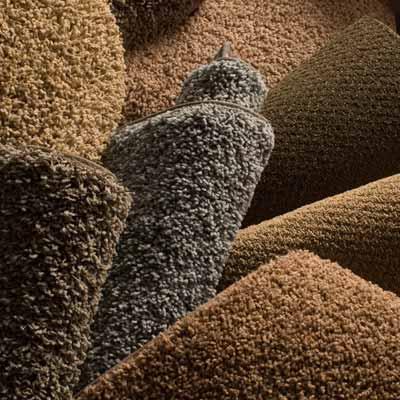 Cut Pile Carpet 02