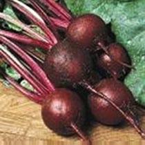 Ruby Queen Beetroot Seeds