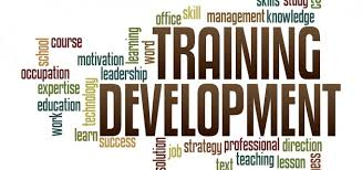 PG Diploma in Training & Development